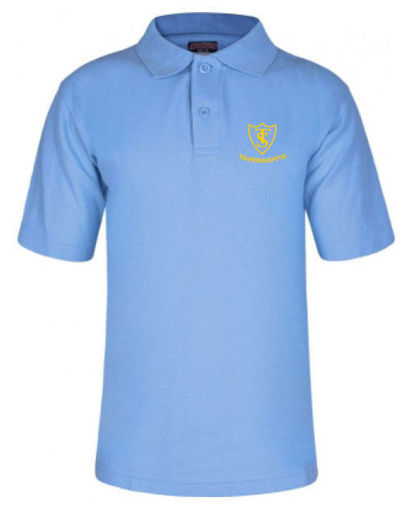 Picture of Tavernspite School Polo Shirt