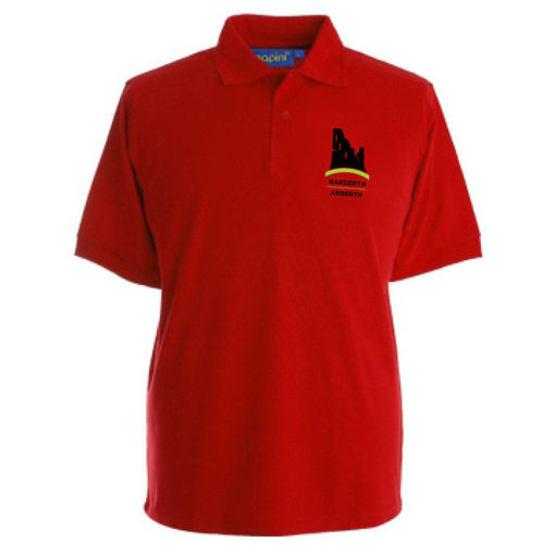 Picture of Narberth School Polo Shirt