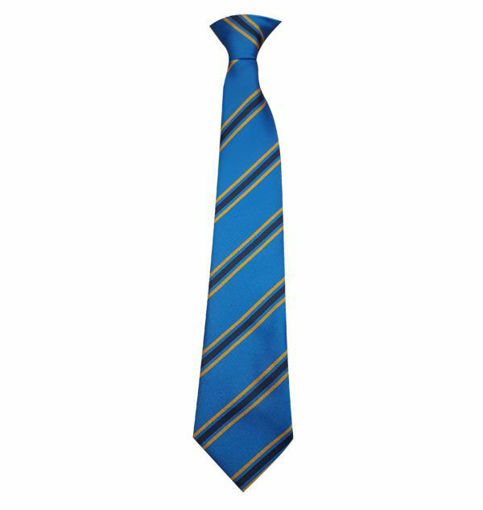 Picture of Caer Elen Clip On Tie