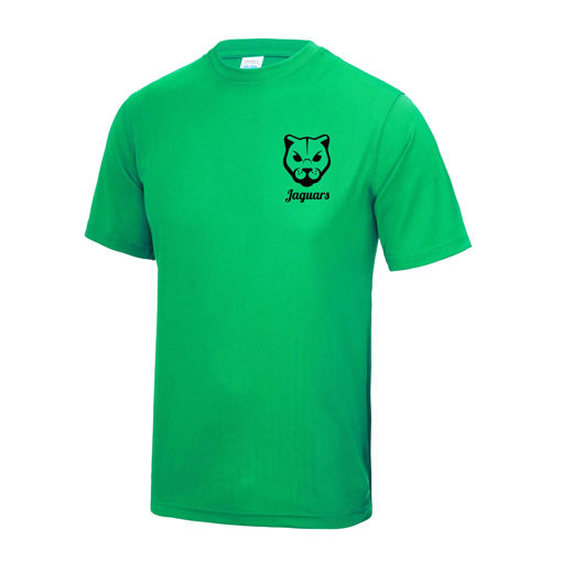 Picture of Jaguars Sports T-Shirt